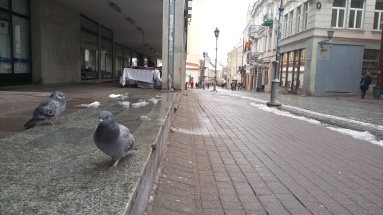 Mart 2016, Vilnius